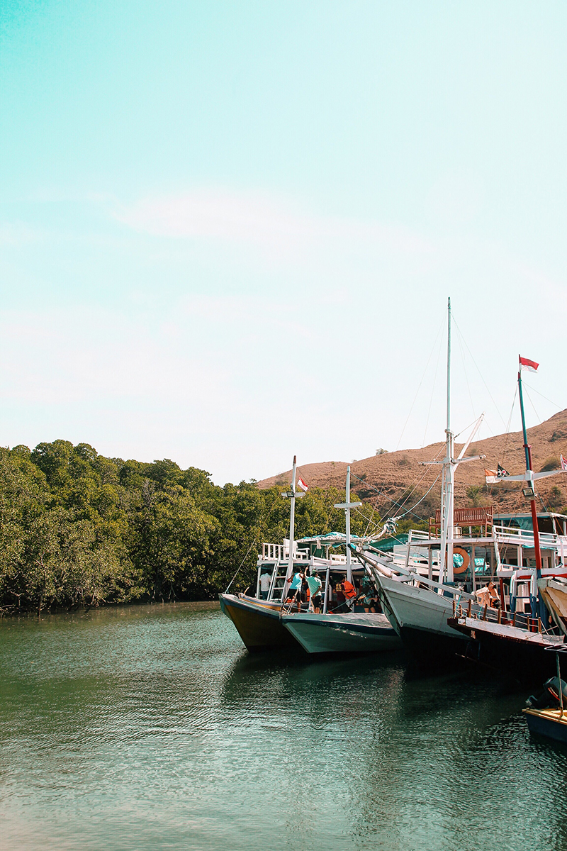 The Perks Of Being Twenty Henry Gerson Gerson Henry Pulau Rinca Komodo National Park Flores Labuan Bajo Visit Indonesia Traveling Lifestyle Beach 12