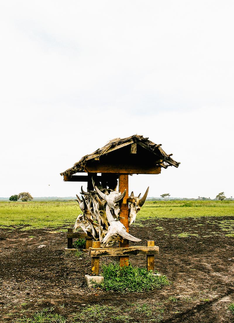 Gerson Henry Henry Gerson Lifestyle Traveling Banyuwangi Bengkalan Jawa Timur East Java Indonesia Kawah Ijen Surabaya 23